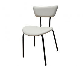 Paint dinning chair